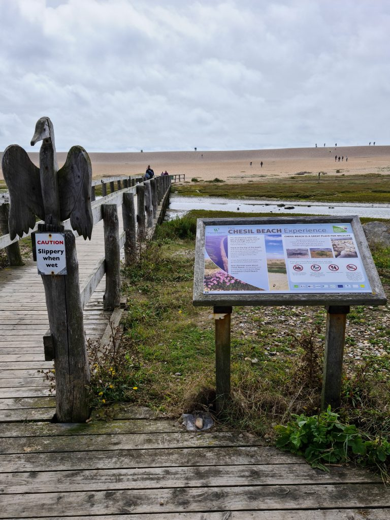 Wooden bridge, pebble beach, information board