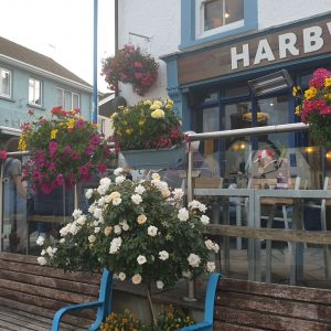 Colourful flower boxes on railings by outside seating area of HARBWR restaurant