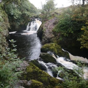 Two waterfalls, one higher than the other, surrounded by forestry